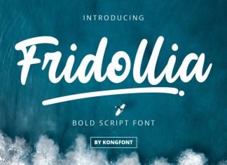 Fridollia Script Font