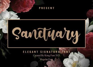 Sanctuary Handwritten Font