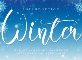 Winter Script Font