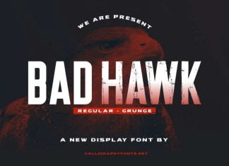 Bad Hawk Display Font