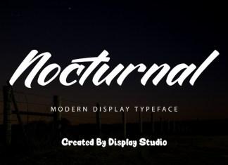 Nocturnal Script Font