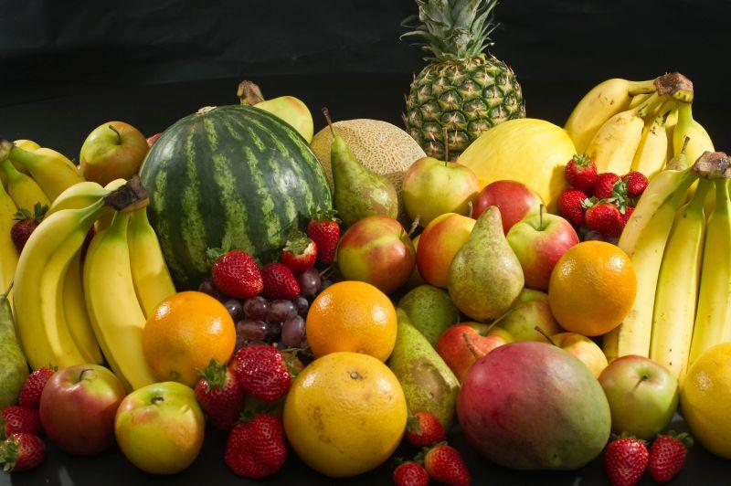 Dieta frugivora