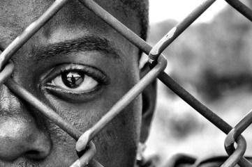 The Eye by John Steven Fernandez