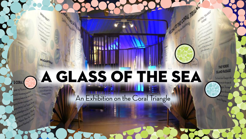 "Five Reasons To Visit The Mind Museum's ""A Glass of the Sea"" Exhibit"