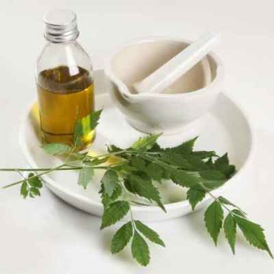neem as acne fighting ingredient