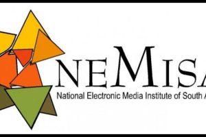 NEMISA Internships