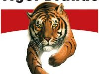 Tiger Brands Internships and Trainee Programmes 2021 Now Open