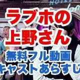 ラブホの上野さんのパッケージ画像