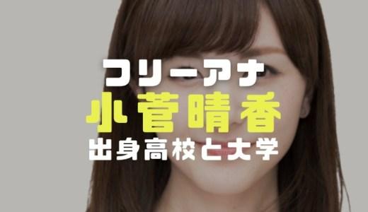 小菅晴香アナの経歴学歴|出身高校大学や北海道文化放送退社とフリー転身理由を調査