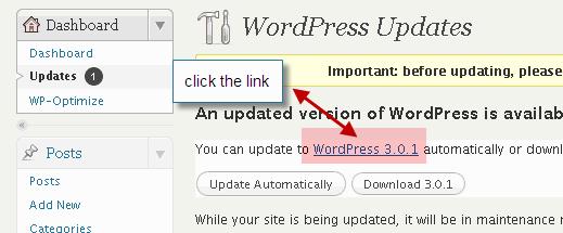 Updating WordPress the smart way