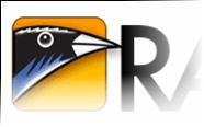 Zoundry Raven