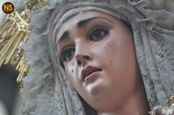 Guadalupe de las Aguas. Traslado extraordinario al Sagrario | Álvaro Aguilar