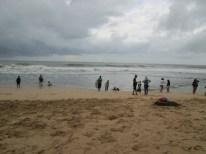 Pesona Pantai Kukup