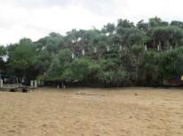 Bukit di pantai Kukup