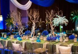 Peacock Wedding Decor Peacock Themed Wedding Decorations Ideas Youtube
