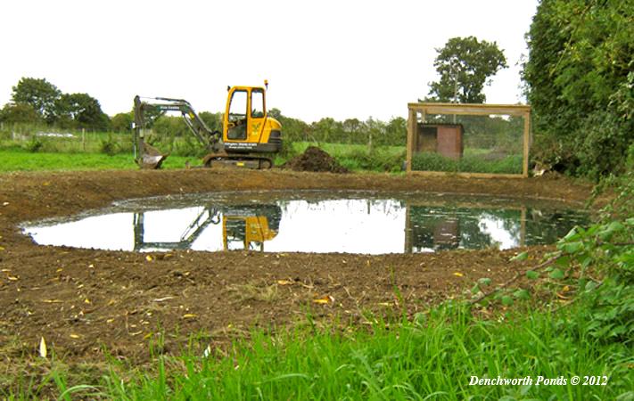 Large Pond Construction