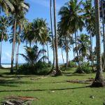 ostrov Simuele