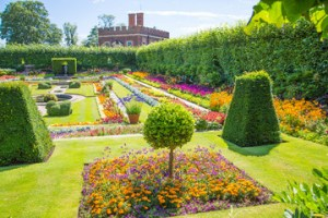 angol kert - angol kert