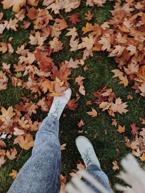 sonbahar renkleri, sonbahar yürüyüş