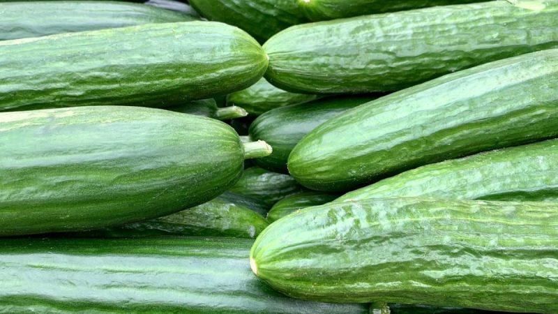 salatalık cilt bakımı
