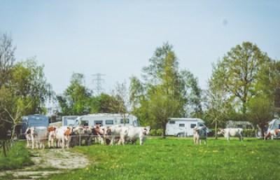 """Weids uitzicht zodat u echt van een """"Heerlijk stukje platteland"""" kunt genieten."""