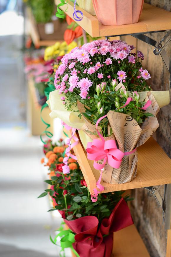 Floral-Dress-Outfit-Sofia-Flower-Shop-Denina-Martin-3