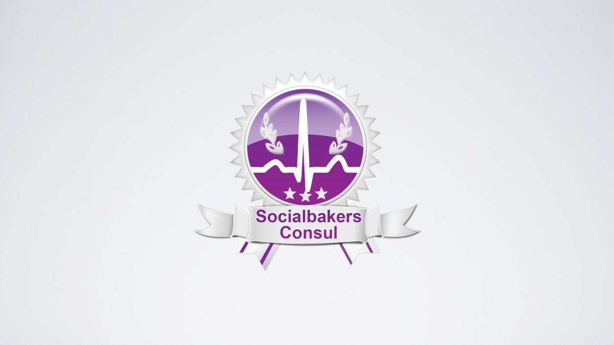 socialbakers consul