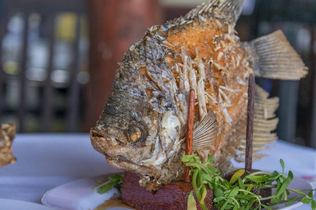 A Mekong speciality: elephant fish.