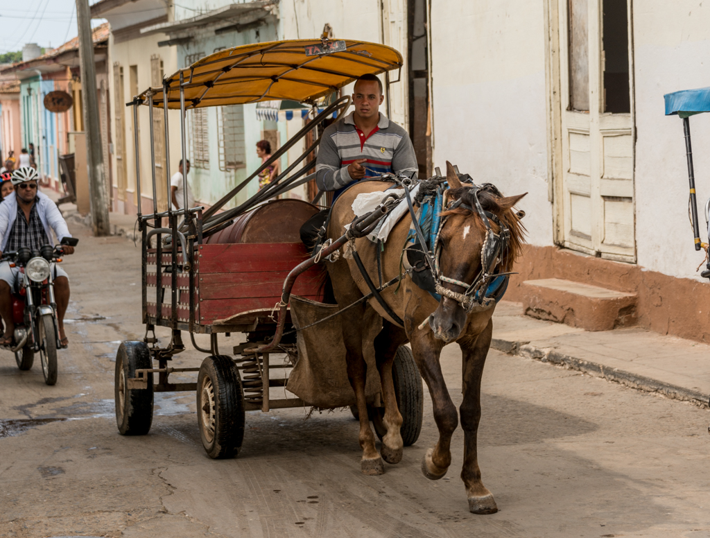 A lot of the commercial traffic in Cuban towns is horse and cart. This horse is delivering drinking water to a residence.