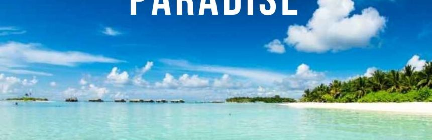 Virtual Island Paradise Experience