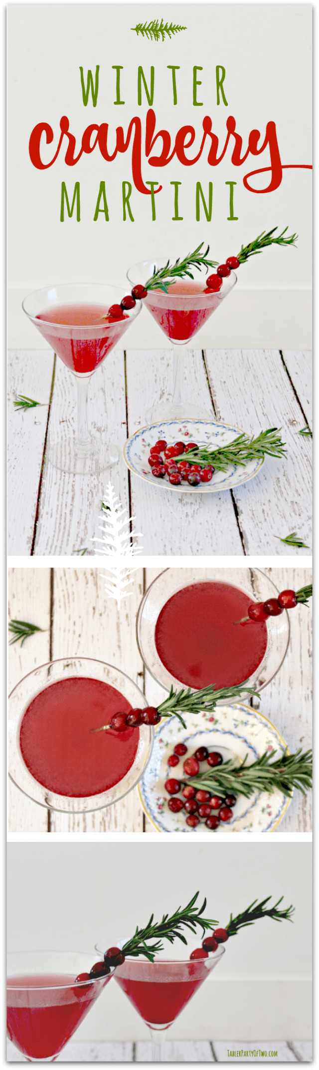 Winter-Cranberry-Martini-2Pinterest