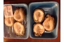 Frozen Fresh Abalone