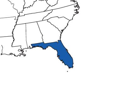 Florida Long-Term Care Insurance