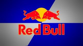 https://i0.wp.com/deniseleeyohn.com/wp-content/uploads/2014/04/Red-Bull.jpg?resize=325%2C183