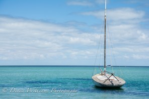 Boat at Denham,Shark Bay