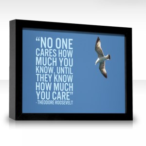 Teddy Roosevelt care quote
