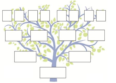 Classification Des Données Et Structures Arborescentes