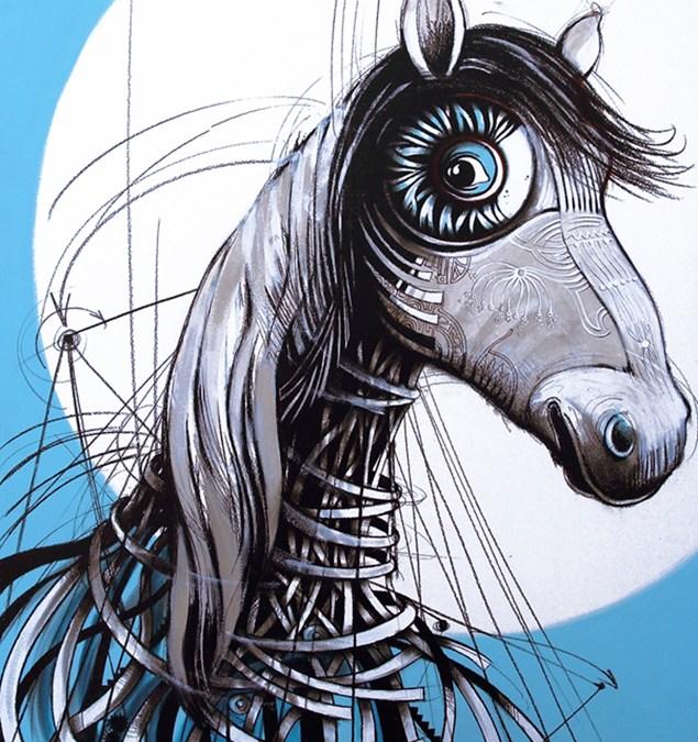 Equus caballus 4