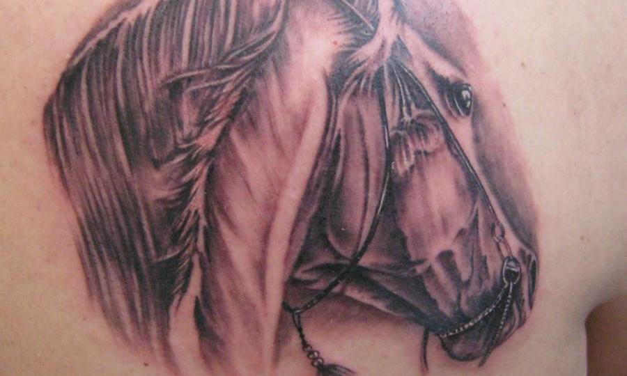 Denis Trevisani Tattoo Studio - TATUAGGIO CAVALLO