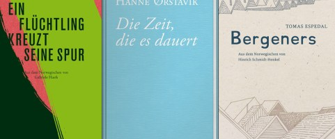 Dienstag, 22.10.2019, 20:00 Uhr – Norwegische Literatur in der DENKBAR