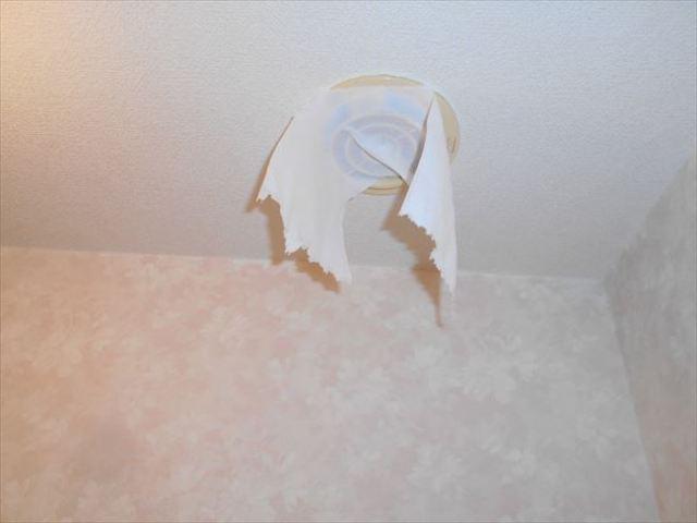 トイレ側吸込テスト