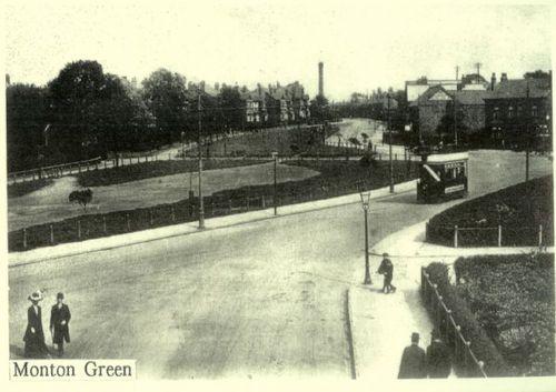 Monton Green