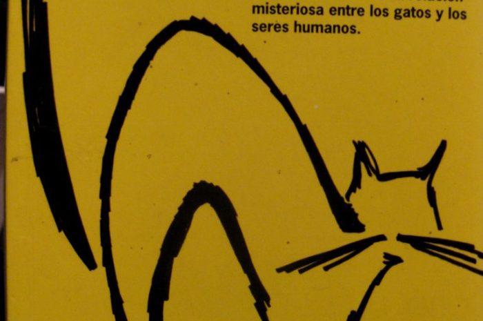 Gato encerrado / William S. Burroughs