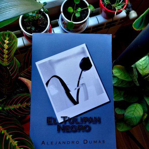 """Portada """"El tulipán negro"""" (Allejandro Dumas) - impresión bajo demanda Amazon (Great Britain)"""