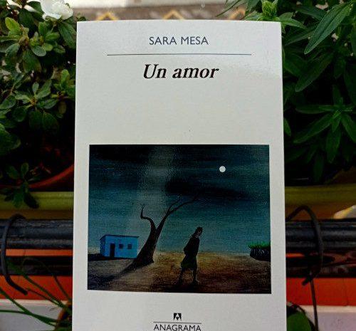 Un amor / Sara Mesa