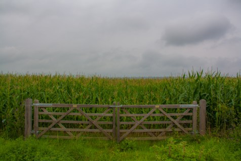 gated-field-of-crops