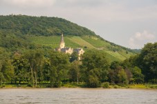 castle-in-the-woods