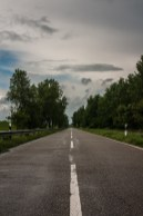 the-long-wet-road