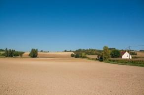 barren-field