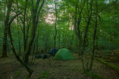 yet-another-camp-spot-in-the-woods!